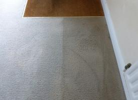 Carpet cleaning Bishopsteignton