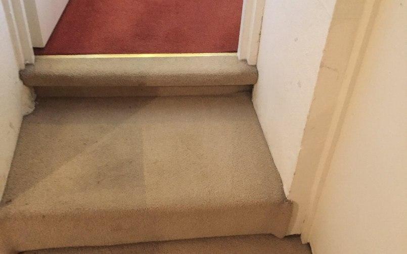 carpet cleaning Kenton
