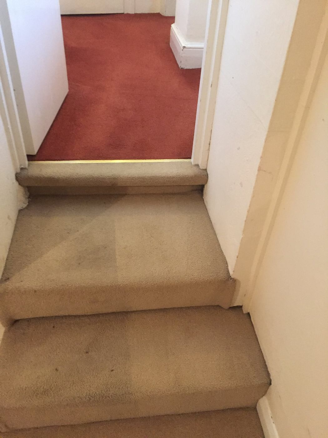 Professional Carpet Cleaning In Exeter Rogers Cleaning
