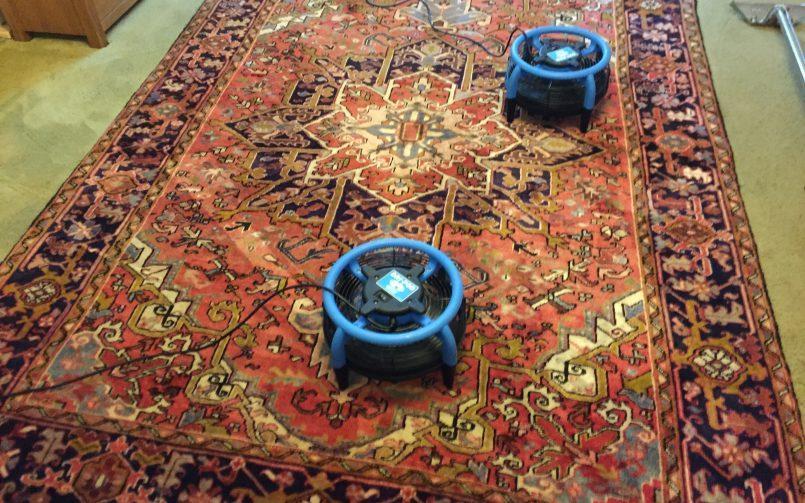 Oriental rug cleaning Topsham